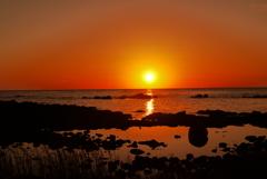 海の紅葉   日本海は能登 上野海岸