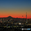 スカイツリーと富士山