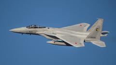 假想敌部队的F-15鷹式戰鬥機百里基地巡回教導・・・2