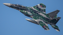 假想敌部队的F-15鷹式戰鬥機百里基地巡回教導・・・11