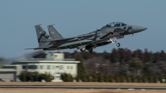 假想敌部队的F-15鷹式戰鬥機百里基地巡回教導・・・52