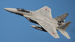假想敌部队的F-15鷹式戰鬥機百里基地巡回教導・・・1