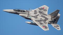 假想敌部队的F-15鷹式戰鬥機百里基地巡回教導・・・9