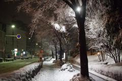 首都圏4年ぶりの大雪・・・9