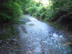 南秋川の流れ