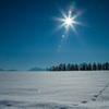 眩しい冬の太陽