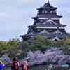 広島に春到来~歴史感じようぜ!