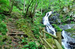 大倉滝まで歩く 09