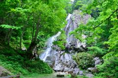 大倉滝まで歩く 11