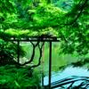 「言の葉の庭」を撮る 02