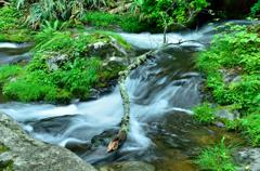森のみどりと水のしろ 04