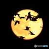 満月の空を行く