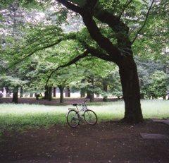 自転車ひとやすみ中