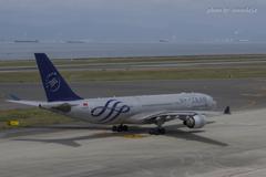 Vietnam Airlines (スカイチーム)