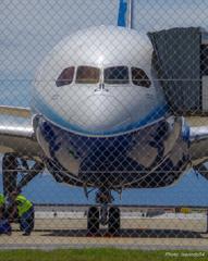 787ドリームライナー ZA001号機 ②
