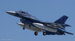 F-2A (13-8514)④