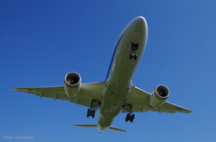 Boeing 787-8 Dreamliner ③