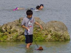 沖縄はもう夏です!