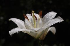 梅雨の日の午後