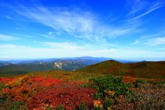 栗駒山から (紅葉絨毯)