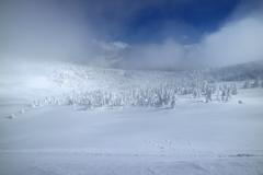 HEAVEN SNOW