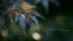 葉の色はうつりにけりな