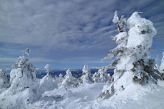 W!nter ZAO !!! (Snow monster Ⅲ)