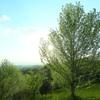 - Green  air -