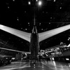 FLIGHT OF DREAMS B787