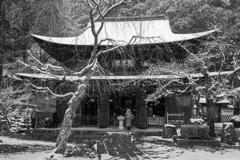 定光寺 雪