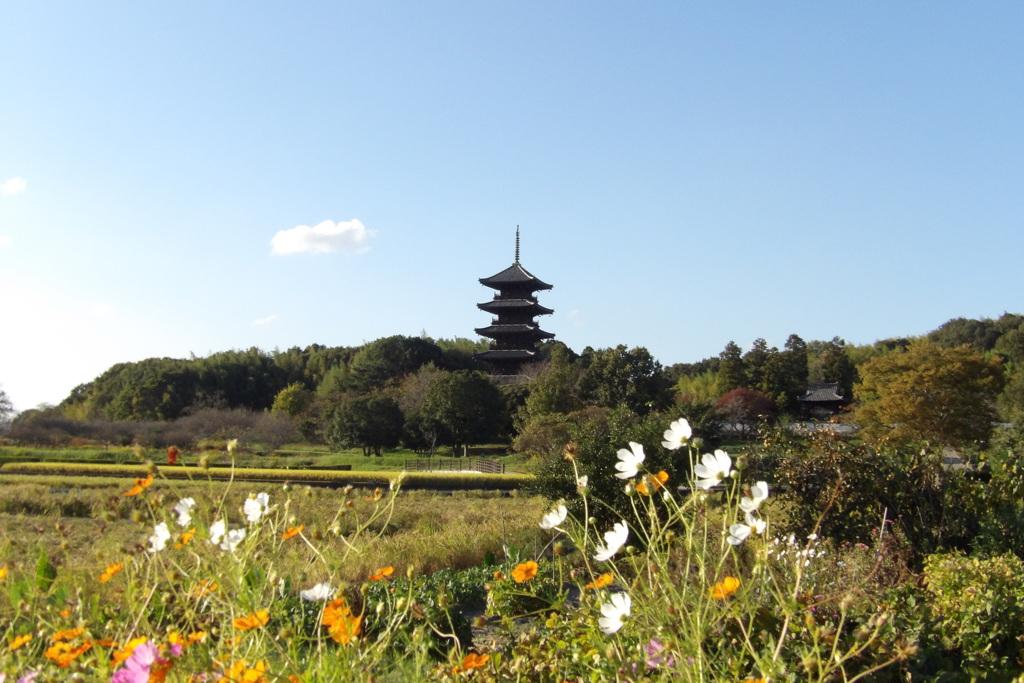 備中国分寺の秋
