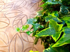 Leaf and leaf