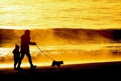 朝のお散歩