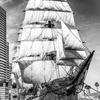 Sailing boat Nippon-Maru