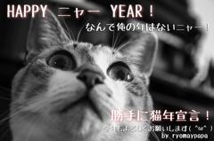 今年もよろしくお願いします( ^ω^ )