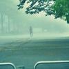 濃霧の中で