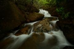 深山小滝2021 (2)