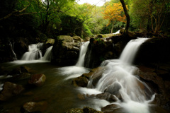尼ん滝202009 (1)