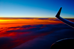 sunset wing