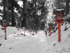 金剛山の参道と残雪