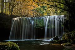 鍋ケ滝の秋