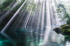 コバルトブル-の渓流