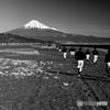 富士山と野球部