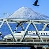 新幹線と富士山とカラス