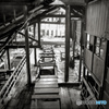 Abandoned factory2