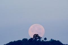 「岐阜城と月」の写真に憧れるのですが・・・
