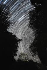 渦巻く星の夜