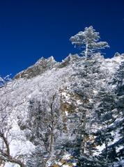 Frozen winter 1