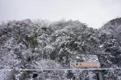 寒山一匹鉄道