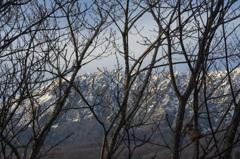 大山ー暖冬なり